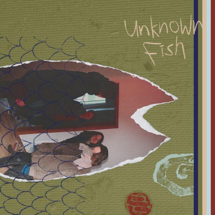 Frogcodile, Untoldency, Untoldency Magazine, Indie, Musik, Blog, Blogger, Online Indie Musik Magazin, untold music, frogcodile, listenrecords, unknown fish